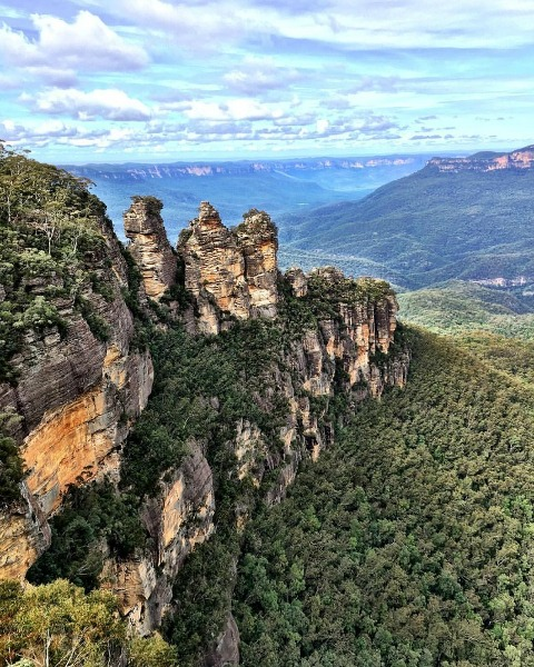 Kimba Likes Blue Mountains