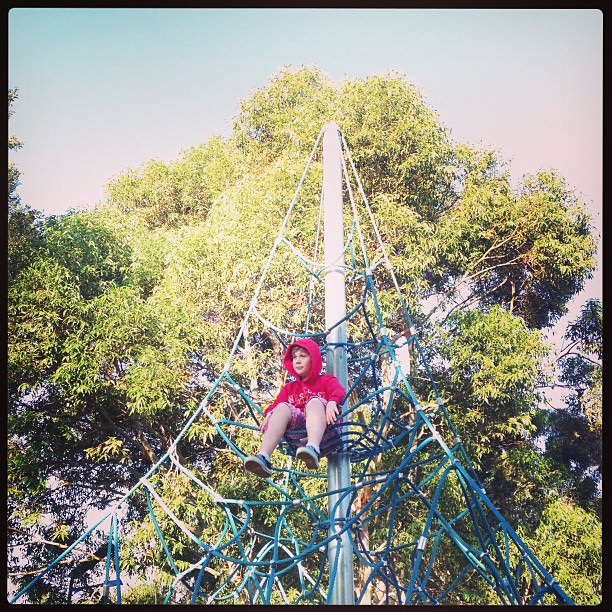 Boyo style high up in the park