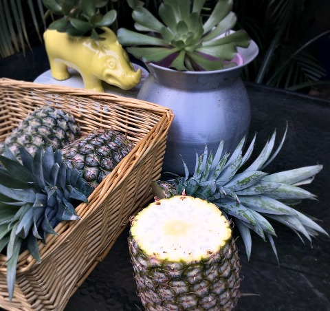 Kimba Likes Aussie Pineapples - sharing some pineapple life hacks